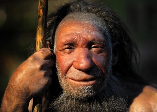 "Bild ""http://skontrast.die-seite.com/galerien/Sonstiges/neandertaler.jpg"""